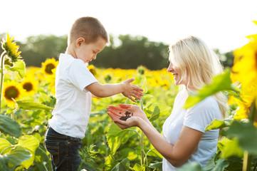 Alimentación ecológica: una opción para mejorar tu salud y el entorno